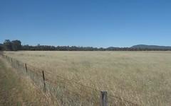 87, Casuarina Drive, Eugowra NSW