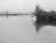 Reflections 2 (2005) (IntimateMuse) Tags: chatfieldstatepark colorado monochrome winter reflextions landscape bw
