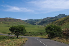 imgp3104 (Mr. Pi) Tags: trees hills valley ontheroad dirtywindow southafrica