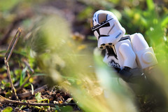 Blatant Atmosphere (RagingPhotography) Tags: lego star wars clonetrooper clone trooper republic seperatists outdoors outdoor sunny bright sunliught sunshine sun shine colorful green nature walking walk gunner troop soldier blaster blasters armed arms arm firearms weapon weapons plastic toy toys minifigure minfig figure cute cool shot angled pretty