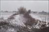 get my drift (steve-jack) Tags: nikon f5 50mm fujicolour c200 film 135 snow hertfordshire tetenal c41 kit epson v500