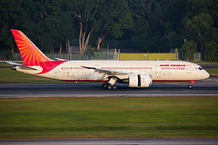 Air India Boeing 787-8 Dreamliner VT-ANB (Mark Harris photography) Tags: spotting plane aviation canon 5d changi india airindia 787 passenger peoplerunway gras fence morninglight morning trees branch nature markiii pilot crew tail engine wing fuselage sunlight photo image photoshop editing color