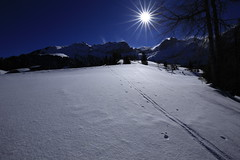 Vapaa on vain umpihanki (K M V) Tags: sunstar sunburst latu talvi hanki vapaaonvainumpihanki aarohellaakoski lumi lunta track snow sunshine winter crosscountryskiing skiing hiihto murtomaahiihto skidefond skifahren schifahren lhiver vinter invierno inverno neige nieve neve snö switzerland schweiz suisse svizzera sveitsi haldi hankikanto