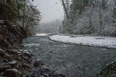 White River Wild (writing with light 2422 (Not Pro)) Tags: whiteriver snoqualmienationalforest skookumflats river snow sonya7 richborder landscape washingtonstate rocks trees