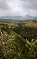 Small valley near Cotopaxi (benjamin.t.kemp) Tags: valley green greenerie plants vegetation landscape crack nature atmosphere atmospheric beauty mothernature