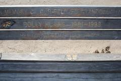 IMG_7649 (mudsharkalex) Tags: california pacificgrove pacificgroveca