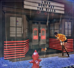 But you can give away for free (MissZafire) Tags: sl secondlife second life cat rain people coat night shadows love animals save shelter