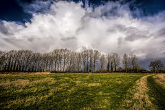 Storm approaching (gopper) Tags: trees grass storm snow hail nikon ngc lechlade gloucestershire swindon wiltshire border riverthames thames river stormy cloud clouds cloudy dark foreboding weather d7100 sigma 10mm 1020mm england uk