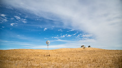 Windmill (RWYoung Images) Tags: rwyoung canon 5d3 derrinallum victoria windmill farm country rural