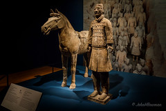 Feet (and All Else) of Clay (John H Bowman) Tags: virginia richmond museums virginiamuseumoffinearts art sculpture terracottaarmy cavalrymanhorse availablelight march2018 march 2018 canon24704l