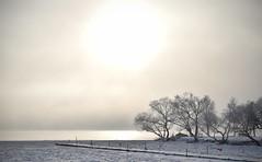 Soldis över Mälaren (A Edvall) Tags: sky sea himmel sjö winter vinter sun haze sol dimma fog is ice water vatten brygga trä tree landscape landskap pier