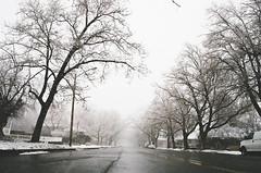 chilly (janette_j) Tags: chilly cold weather winter snow cap trees street ogden utah nikon n65 ektar 100 35 mm film