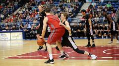 "NBIAA 2018 AAA BOYS SJHS vs FHS 6588 16x9 (DaveyMacG) Tags: saintjohn newbrunswick canada harbourstation nbiaa final12 canon6d sigma70200 interscholastic frederictonhighblackkats ""saint john high school"" greyhounds boysbasketball saintjohnhighschool"