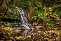 'Lillydale' falls (e0nn) Tags: steveselbyphotography steev steveselby pentax pentaxk1 ricoh hdpentaxdfa2470mmf28edsdmwr nisifilters nisi waterfalls tasmania visittasmania skylum aurorahdr hdr