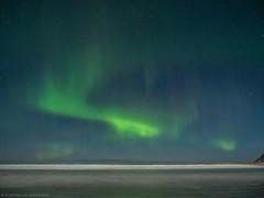 Beach Babes (katrin glaesmann) Tags: lofoten norway 2018 winter nordland unterwegsmiticelandtours photographyholidaywithicelandtours northernlights auroraborealis polarlys nordlys aurorapolaris beach sea skagsanden flakstadøy flakstadøya flakstadsanden