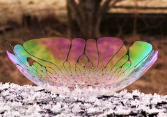 Bubble Cup of Colour..x (Lisa@Lethen) Tags: bubble freezing half colour rainbow iridescence morning frosty weather macro
