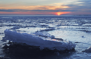 Sea covered by ice rafts