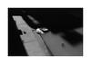 (billbostonmass) Tags: adox silvermax 100 129silvermax1100min68f film fm2n 40mm ultron sl2 epson v800 boston massachusetts