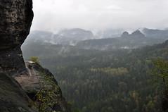 Sächsische Schweiz (Zorbas87) Tags: nebel wald bäume felsen fog mist forest trees rocks elbsandsteingebirge deutschland germany europa europe natur nature outdoor sächsischeschweiz berge mountains