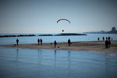 ῎Ικαρος (N I C K ....1 8 2 8) Tags: sea sole sun shadow sanbenedettodeltronto spiaggia mare moving men people persone parapendio italy cane dog nick1828 nick 1828