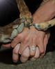 "Cody, Val and ""the kids"" Engagement (greyhound rick) Tags: engagement family pets dogs group love outdoors gilbert arizona gilbertarizona gilbertriparian riparian nikon nikkor sb800 photoshop lightroom niksoftware nik hands paws"