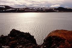 Le lac Kleifarvatn (didier95) Tags: lackleifarvatn islande lac paysage montagne