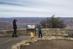 Grand Canyon (Trasaterra) Tags: southwest arizona utah california grand canyon monument valley zionnp brycenp deathvalleynp mojavenp travelwithkids desert mountains travel