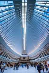The Oculus (elohca) Tags: new york nyc manhattan wtc world trade center people street tourist blue indoor urban busy mall shopping architecture monuments icons big tall ceiling