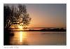 Lever du jour sur Saint Florent le Vieil (Bruno-photos2013) Tags: loire maineetloire anjou saintflorentlevieil leverdujour sunrise contrejour reflets reflexion paysageligérien paysage paysdeloire