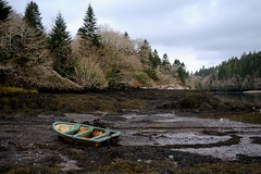Ebbed away. (S Collins 2011) Tags: boats ringofkerry ireland cokerry sea tidalbay seaweed green