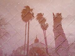 Cielo enladrillado (arapaci67) Tags: dobleexposición olympus villanuevadelareina palmeras paisaje ladrillo rojo red jaén andalusia