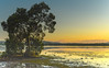 Sunrise Waterscape (Merrillie) Tags: daybreak woywoy landscape nature australia foreshore newsouthwales earlymorning nsw brisbanewater morning water coastal sunrise outdoors waterscape sky centralcoast bay dawn