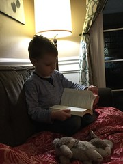 """Paul Reads Mommy's Book • <a style=""""font-size:0.8em;"""" href=""""http://www.flickr.com/photos/109120354@N07/26050342327/"""" target=""""_blank"""">View on Flickr</a>"""