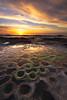 Wipeout (David Colombo Photography) Tags: sunset reef pacific ocean color moss algae lajolla sandiego california coast seascape landscape orange blue green sepia sun clouds nikon d800 davidcolombo davidcolombophotography