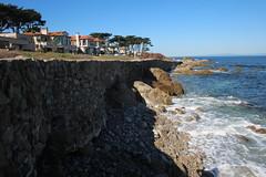 IMG_7625 (mudsharkalex) Tags: california pacificgrove pacificgroveca