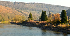 VIEW OF TINTERN AND THE WYE (chris .p) Tags: nikon d610 wales tintern abbey february 2018 water winter tinternabbey capture uk