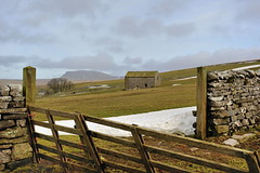 Over the gate (images@twiston) Tags: dales snow penyghent yorkshire northyorkshire ribblesdale 3peaks yorkshire3peaks national park dry stone wall field barn yorkshiredalesnationalpark moorland moor landscape fells imagestwiston godsowncountry nationalpark polarizer cirpl cpl