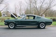 1967 Ford Mustang 390 GT Fastback (dmesser92) Tags: carsandcoffee carscoffee carsandcoffeeoftheupstate carscoffeeoftheupstate carshow carmeet car truck automotive ford mustang fordmustang 390gt v8 highlandgreen bullitt