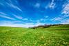 DSC_0015 (tsmartin75) Tags: berea kentucky ky blue green sky clouds field cows landscape nature tonika1116 nikon d5500 nikond5500 wideangle lightroom
