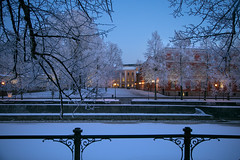 (LLOVGREEN) Tags: aurajoki river aura turku city varsinaissuomi åbo finland suomi winter snow snowy street streets riverside view tree trees wood woods park parks sunset sundown dusk bluehour ice icy