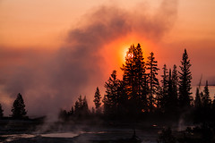 _MG_9620 - Sunrise at Yellowstone Lake.  ©Jerry Mercier (j. mercier) Tags: nature nationalparks beauty beautiful west sky skies jerrymercier mercier landscape landscapes scenic colorful outdoor outside photography yellowstonenationalpark yellowstonelake sun sunrise orange yellow red steam morning trees lodgepolepinetrees lodgepole pine tree silhouette lake water lakes wyoming