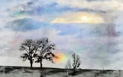 Un bout d'arc-en-ciel. (*Jost49*) Tags: paysage landscape arbre tree ciel sky arcenciel rainbow texture panasonic lumixfz1000