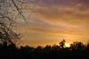 Clouds At Sunrise. (dccradio) Tags: lumberton nc northcarolina robesoncounty sunrise risingsun saturday saturdaymorning morning goodmorning nature natural outdoors outside tree trees sky clouds morninglight nikon d40 dslr branches sticks treebranch treebranches treelimbs