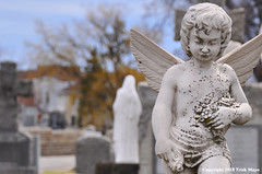 The Freckled Angel (Trish Mayo) Tags: angel cemetery straymonds saintraymonds grave monument sculpture