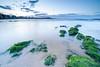 Playa de San lorenzo (ignaciofedz) Tags: playasanlorenzo gijón xixón asturias atardecer sunset sea marcantabrico rocas musgo largaexposición