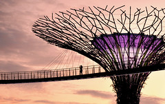 sky walk (poludziber1) Tags: street streetphotography skyline summer sky sunset singapore city colorful cityscape color colorfull capital clouds silhouette people