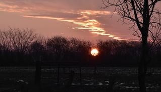 Die Sonne geht auf in Bergenhusen, Stapelholm (2)