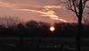 Die Sonne geht auf in Bergenhusen, Stapelholm (2) (Chironius) Tags: stapelholm bergenhusen schleswigholstein deutschland germany allemagne alemania germania германия niemcy himmel sky ciel cielo hemel небо gökyüzü wolken clouds wolke nube nuvole nuage облака morgendämmerung sonnenaufgang morgengrauen утро morgen morning dawn sunrise matin aube mattina alba ochtend dageraad zonsopgang рассвет восходсолнца amanecer morgens dämmerung gegenlicht silhouette baum bäume tree trees arbre дерево árbol arbres klinx