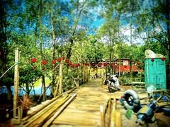 百吉轩 SBE, 43400, Selangor https://goo.gl/maps/TvyMJRo1TmC2  #tree #trip #travel #holiday #traveling #tree #Asian #Malaysia #negerisembilan #holidayMalaysia #travelMalaysia #nature #大自然 #树 #旅行 #度假 #亚洲 #马来西亚 #森美兰 #马来西亚度假 #自游马来西亚 #restaurant #rural #乡村 #kampu