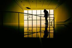 Sundowns Are Golden Then Fade Away (Thomas Hawk) Tags: america julia juliapeterson manhattan moma museum museumofmodernart nyc newyork newyorkcity usa unitedstates unitedstatesofamerica mrsth spouse wife us fav10 fav25 fav50 fav100